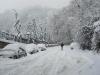 nevicata-a-cosenza-del-16122007010