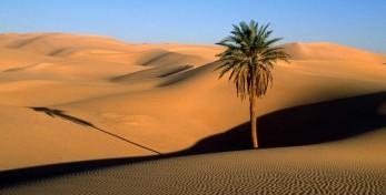 Caldo sahariano