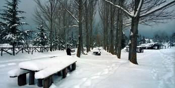 neve-sulla-sila