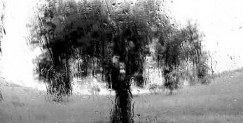 Pioggia in campagna